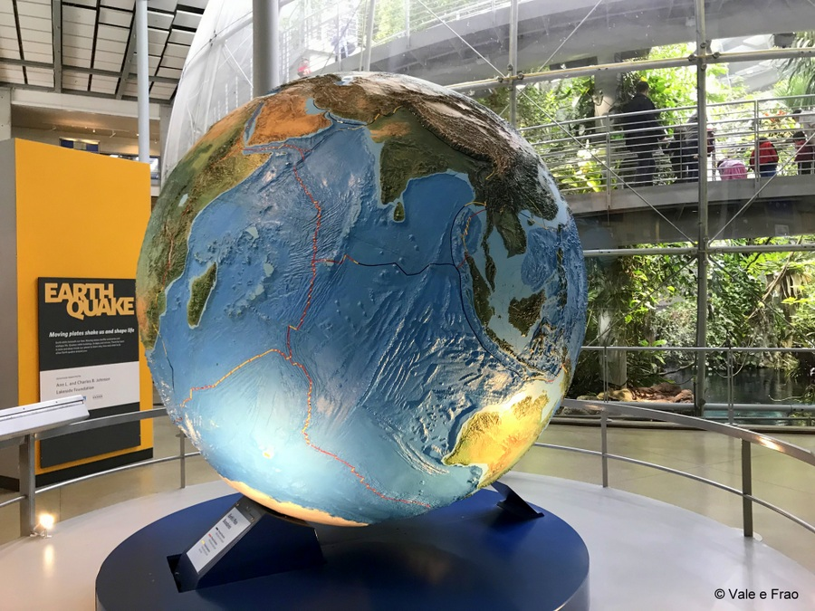 Visitare l' Accademia della Scienza a San Francisco in California mondo
